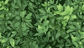 Naadloze textuur met groene bladeren Royalty-vrije Stock Afbeelding