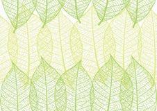 Naadloze textuur van bladeren Royalty-vrije Stock Fotografie