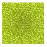 Naadloze textuur van bladeren Stock Fotografie