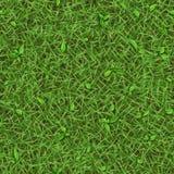 Naadloze textuur van de zomer groen gras met kleine bladeren Stock Foto