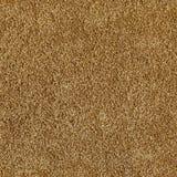 Naadloze textuur van zandige oppervlakte Stock Afbeelding
