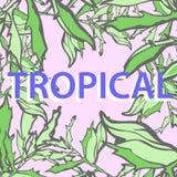 Naadloze tropische het patroonachtergrond van de bladerendruk Stock Afbeeldingen