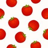 Naadloze vectorachtergrond met tomaten Stock Fotografie