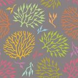 Naadloze vectorpatroon kleurrijke algen en installaties Stock Fotografie
