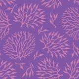 Naadloze vectorpatroon kleurrijke algen en installaties Royalty-vrije Stock Afbeelding