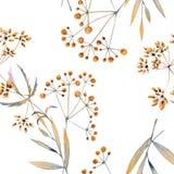 Naadloze waterverfachtergrond die uit droge bloemen bestaan Stock Foto's
