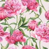 Naadloze waterverfachtergrond met roze pioenen Royalty-vrije Stock Afbeelding