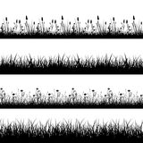 Naadloze wilde kruiden, bloemen en van grassilhouetten vectorreeks Stock Afbeeldingen