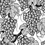 Naadloze zwart-witte druivenachtergrond Stock Foto's