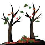 Naakte bomen Stock Afbeeldingen