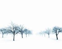 Naakte bomen in sneeuw royalty-vrije stock afbeeldingen