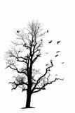 Naakte boom en vogels Royalty-vrije Stock Foto