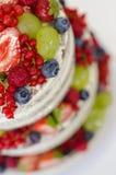 Naakte cake met diverse vruchten stock afbeeldingen