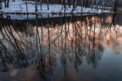 Naakte die bomen, de oppervlakte van het meer worden overdacht Stock Afbeeldingen