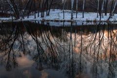 Naakte die bomen, de oppervlakte van het meer worden overdacht Royalty-vrije Stock Afbeeldingen