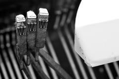 Naaktslakken van een schrijfmachine Royalty-vrije Stock Fotografie