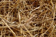 Naald in een haystack stock foto's