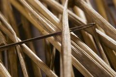 Naald in een hooiberg Stock Afbeelding