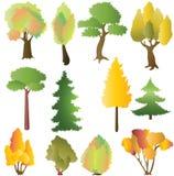Naald en loofbomen in de herfst. Stock Fotografie