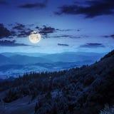 Naaldbos op een berghelling bij nacht Royalty-vrije Stock Foto's