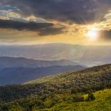 Naaldbos op een berghelling bij zonsondergang Royalty-vrije Stock Afbeelding