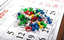 Naalden op de kalenderbos Stock Foto