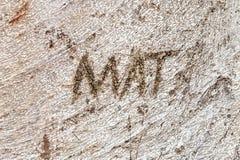Naam Mat Carved in Boomstam van Moreton-Baaivijgeboom Stock Foto