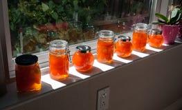 Naar huis gemaakte abrikozenjam Royalty-vrije Stock Afbeelding