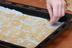 Naar huis gemaakte koekjes Stock Fotografie