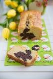 Naar huis gemaakte Pasen Bunny Cake stock foto