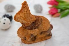 Naar huis gemaakte Pasen Bunny Cake royalty-vrije stock foto's