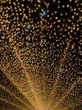 Nabana nenhum jardim na noite no inverno, Mie de Sato, Japão foto de stock royalty free