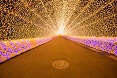 Nabana nenhuma iluminação do inverno de sato foto de stock royalty free