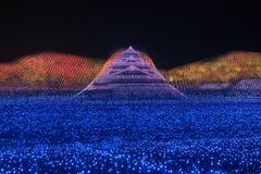 Nabana nenhuma iluminação do wintter do parque de sato, Japão fotografia de stock