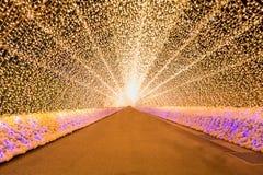 Nabana ninguna iluminación del invierno de sato Fotografía de archivo libre de regalías