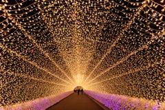 Nabana no Sato garden winter illumination at night, Nagoya, Japan. Tunnel of light ,Nabana no Sato garden winter illumination at night, Nagoya, Japan stock photos