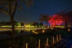 Free Nabana No Sato Winter Illumination Stock Photos - 83788123