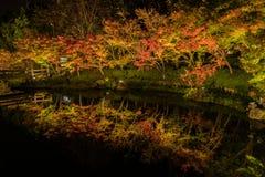 Free Nabana No Sato Winter Illumination Stock Image - 83788191