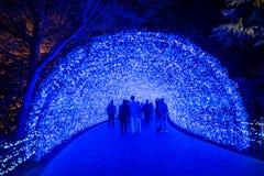 Nabana no sato winter illumination. Mie,Nagoya, Japan - November 23, 2015 : Unidentified tourist in blur motion visiting Nabana no sato winter illumination in stock photo