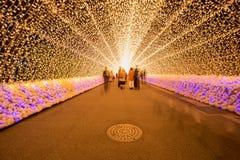 Nabana no sato winter illumination royalty free stock image