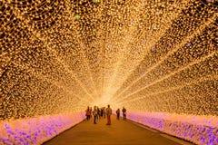 Nabana no sato winter illumination. Mie,Nagoya, Japan - November 23, 2015 : Unidentified tourist in blur motion visiting Nabana no sato winter illumination in royalty free stock image