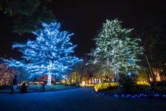 Nabana no sato winter illumination Stock Image