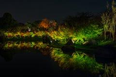 Nabana no sato winter illumination. In Mie ,Nagoya,Japan. It is one of Japan`s largest illumination parks royalty free stock images