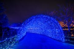 Nabana no sato winter illumination royalty free stock photography