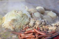 Nabemono (alimento japonês) Foto de Stock Royalty Free