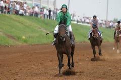 Naberezhnye Chelny,俄罗斯- 2006年6月06日:赛马在喂 免版税图库摄影