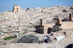 Nabi芭蕉科站点在沙漠 免版税图库摄影
