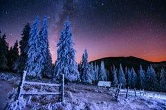 Nabiał Star Trek w zim drewnach obrazy royalty free