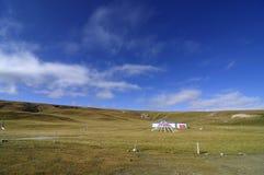 Nabijgelegen meer Qinghai Royalty-vrije Stock Foto's