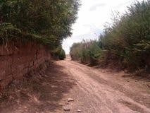 nabijgelegen weg en struiken stock afbeelding